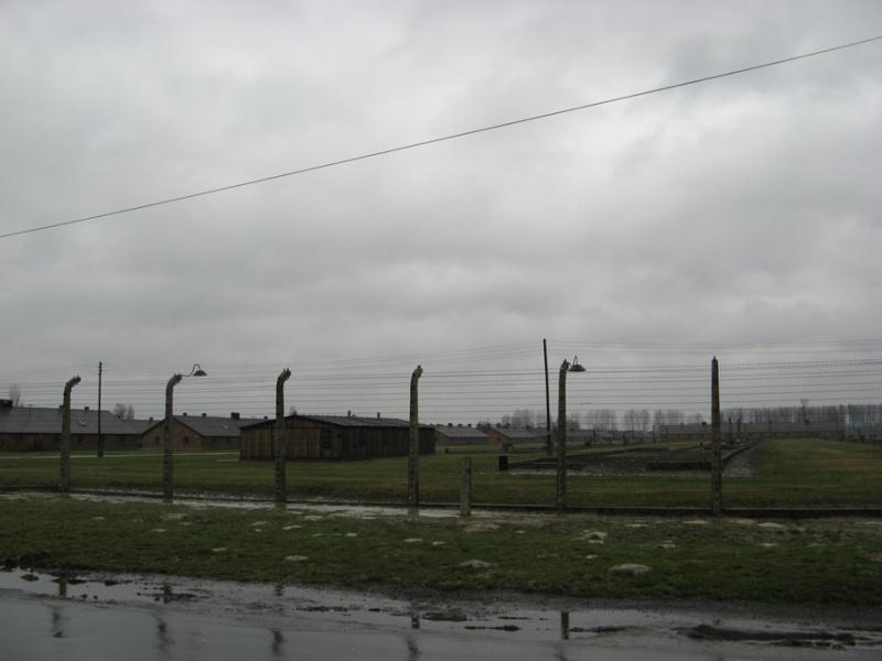 Why we fight: Auschwitz-Birkenau Voyage27
