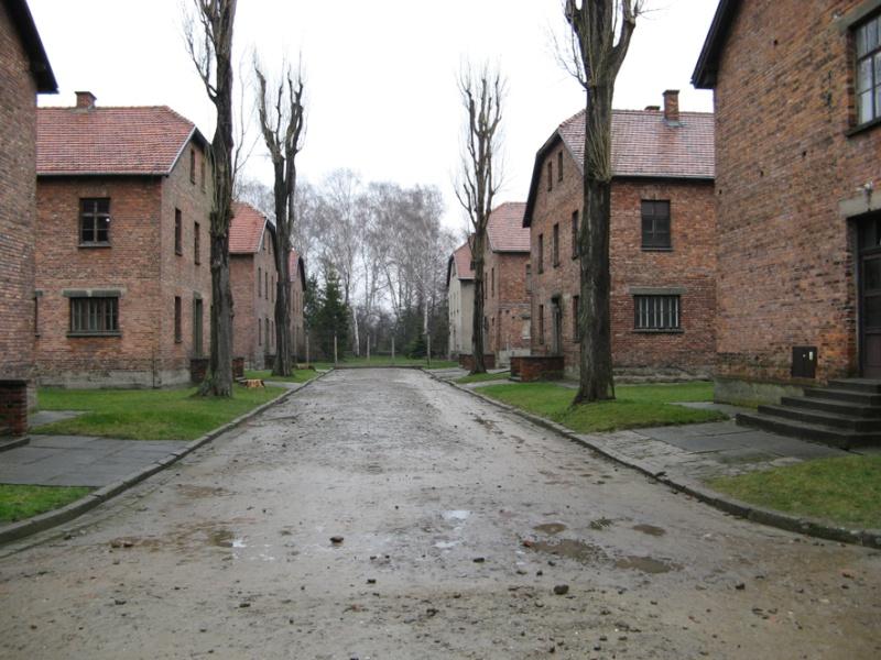 Why we fight: Auschwitz-Birkenau Voyage28