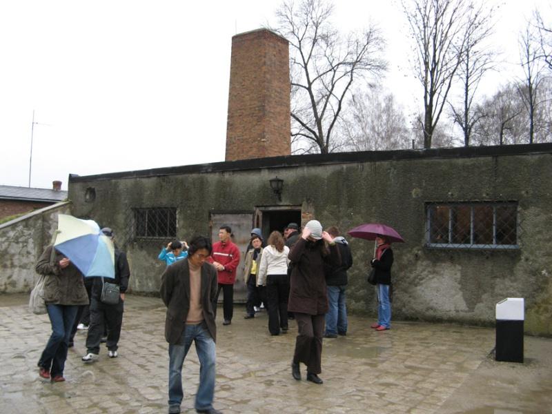 Why we fight: Auschwitz-Birkenau Voyage31
