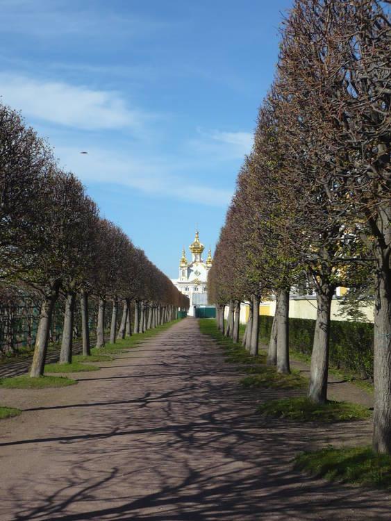 Saint-Petersbourg:sur les traces de Pouchkine et Dostoïevski - Page 8 1378-261