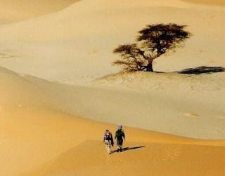 Fascination Désert Maurit10