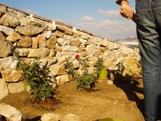 Notre Maison à Naxos  2008-171