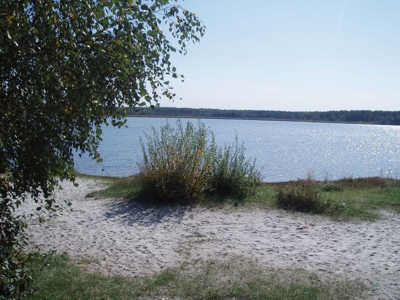 Лебединское озеро 25306110