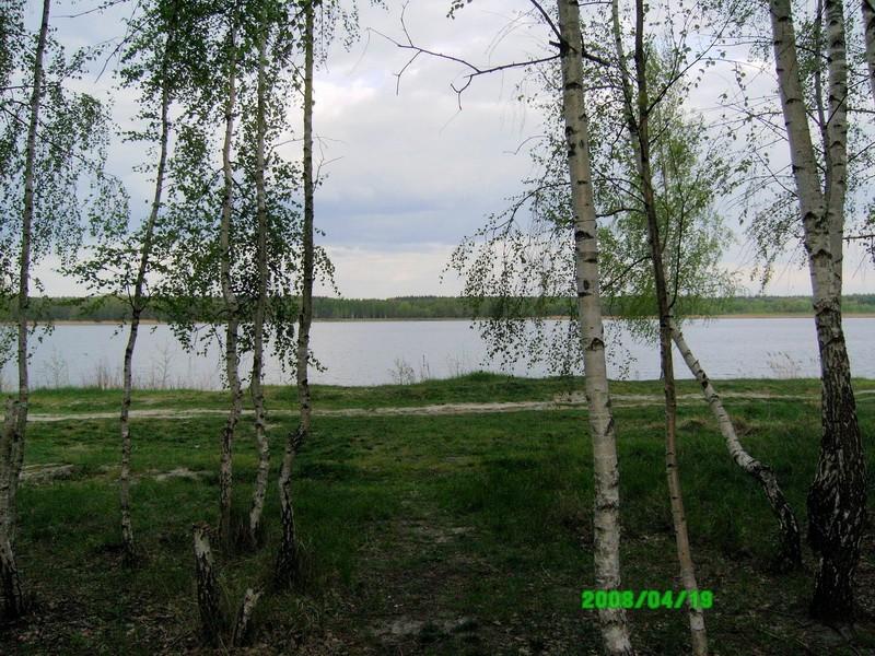 Лебединское озеро 29190710