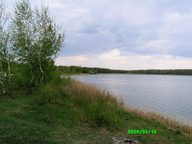 Лебединское озеро 32666110