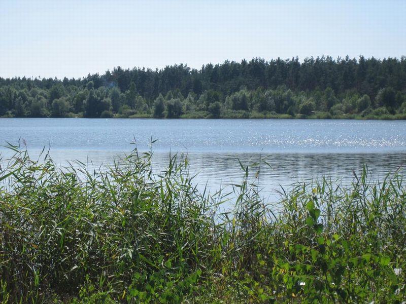 Лебединское озеро 74688310