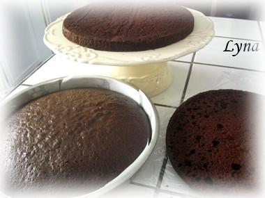 Gâteau au chocolat avec mayonnaise Ruffle10
