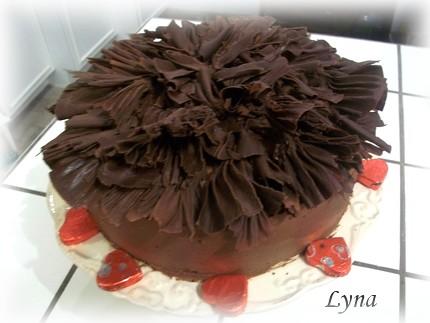 Gâteau au chocolat avec mayonnaise Ruffle11