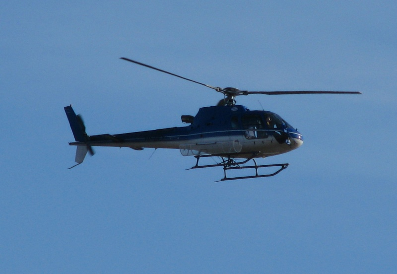 Elicoptere civile, militare, utilitare - 2008 - Pagina 23 Pictu239