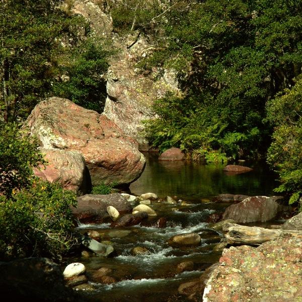 le ruisseau .. 2007-111