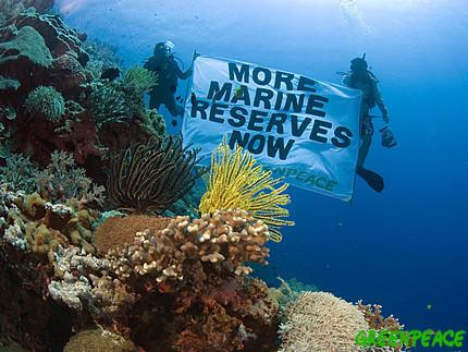 scoop: Greenpeace en faveur de la Réserve de la Marine! Marine10