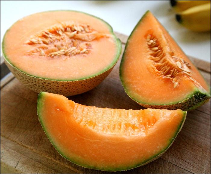 Fruits de saison  Melon10