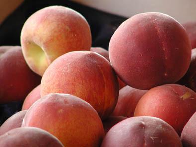 Fruits de saison  Peches10