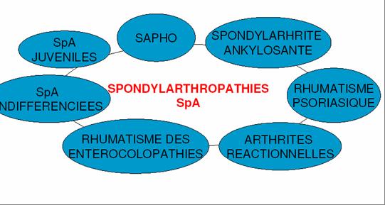 Le syndrôme SAPHO Nouvel10