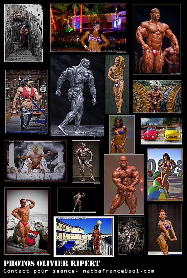 body - Ripert's Body Show 2013 Patch_11