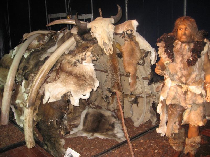 Néandertal à Angoulême Expo_e12