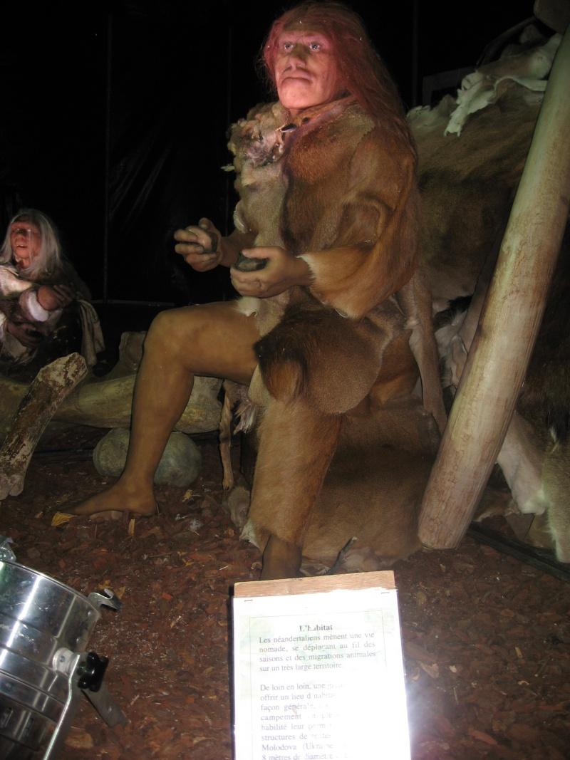 Néandertal à Angoulême Expo_e13