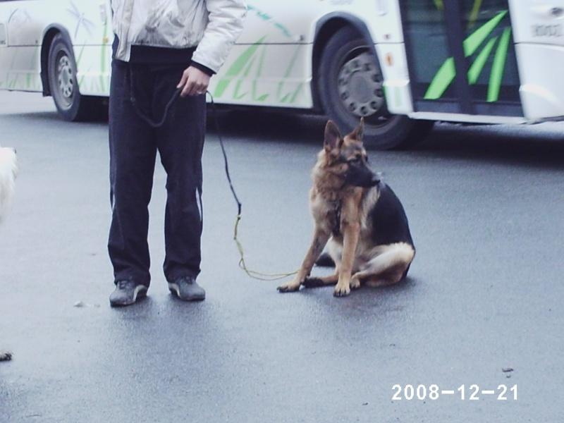 Rencontre en région parisienne le 21 décembre 2008 - Page 11 Phot0219