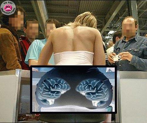 Ou se trouve le cerveau d'une blonde Ou_se_11