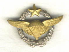 Brevets de Parachutistes Insfrb10