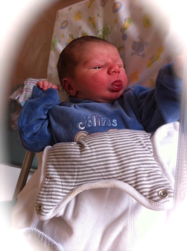 Un autre bébé Img_0710