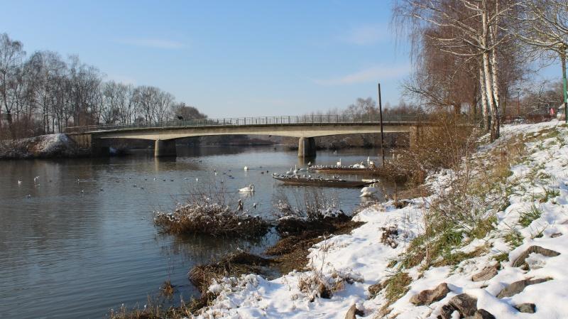 L'Alsace en photo Img_0213