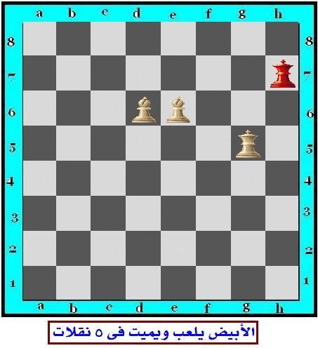 مسائل شطرنج للمستوى المتوسط (3) Chess_13