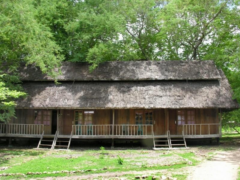 [Indonésie] -île de Rinca National Park 35861610