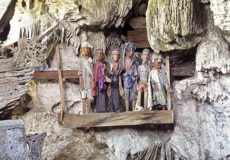 [Indonésie] - Les Torajas (Kabupaten de Tana Toraja), groupe ethnique indigène 46643010