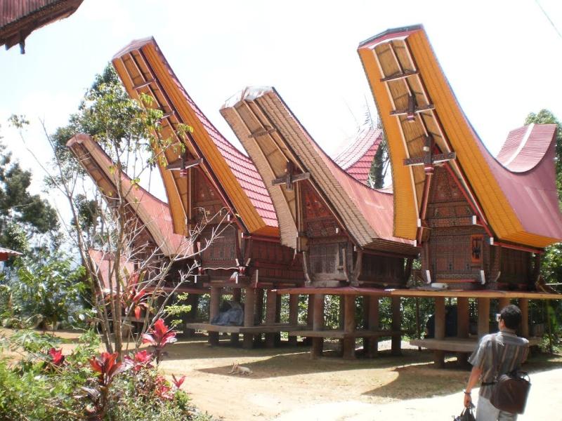 [Indonésie] - Les Torajas (Kabupaten de Tana Toraja), groupe ethnique indigène 70227910
