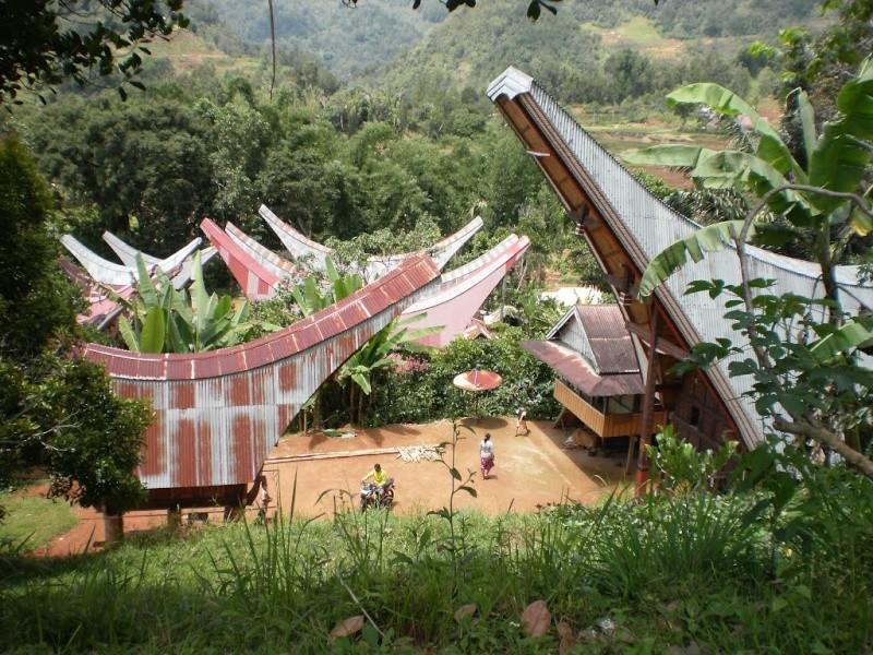 [Indonésie] - Les Torajas (Kabupaten de Tana Toraja), groupe ethnique indigène 70228010