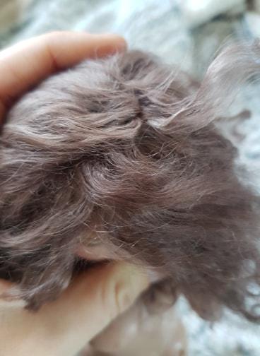 [vd]Wigs ramie/soja /leeke/mohair 7/8 - 6/7 45711210