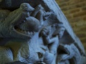 Moissac, le cloître et le portail 60115710