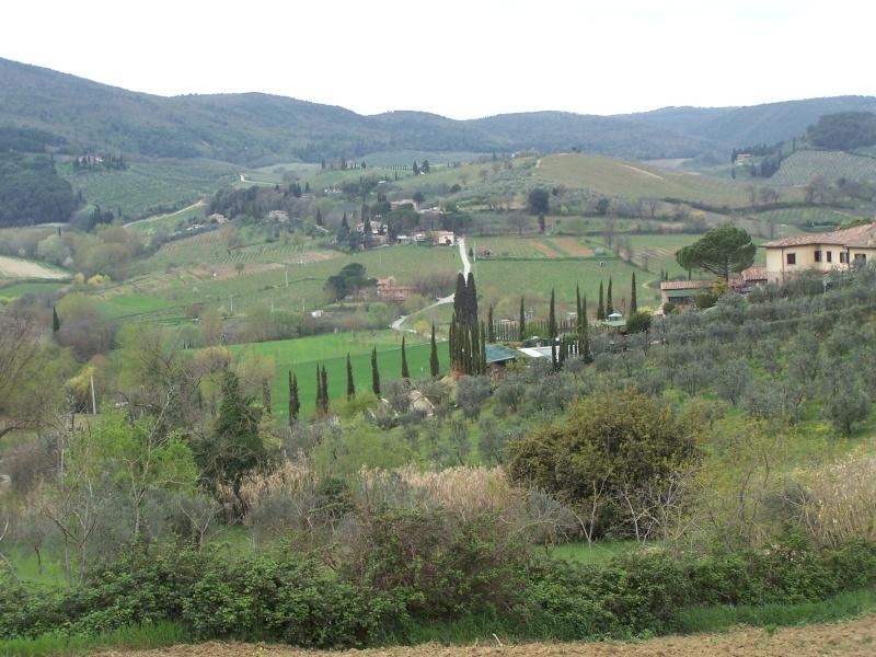 Evviva l'Italia Janvie11