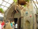 [Walt Disney World Resort] Mon Fabuleux voyage (13-31 Octobre 2010) Wdw_jo24