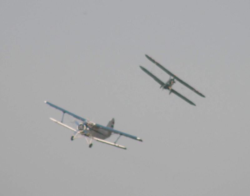 Antonov An-2 - Pagina 6 P8160714
