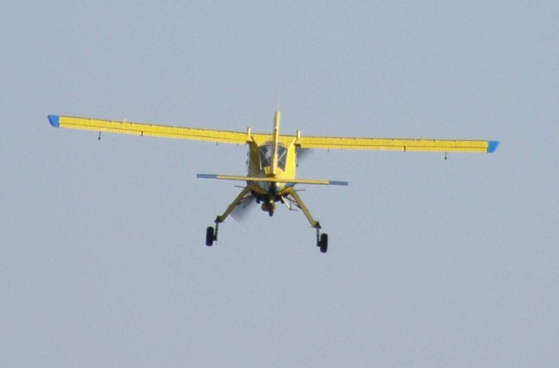 PZL-104 WILGA Pa190219