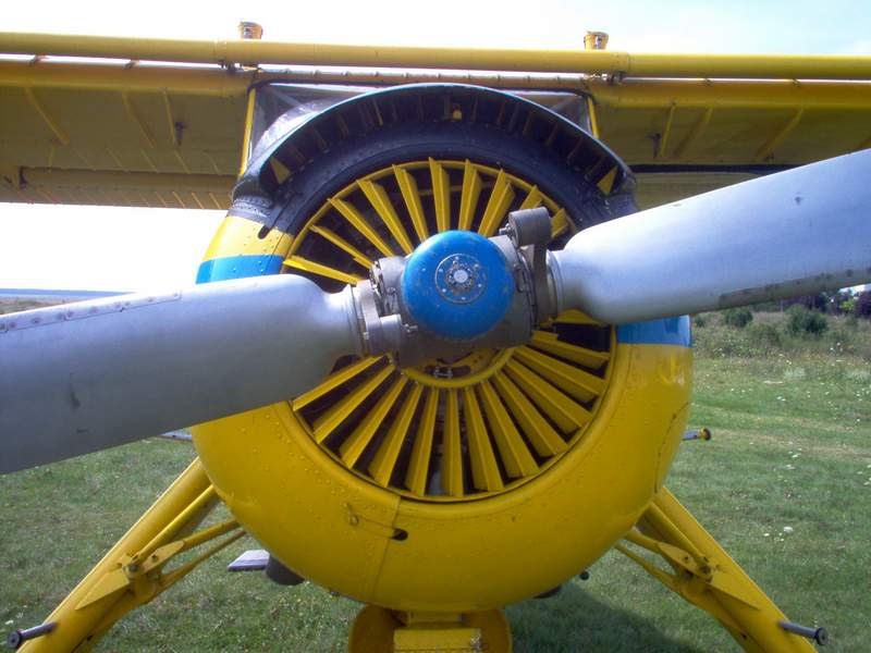 PZL-104 WILGA Pictur20