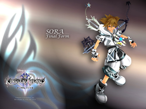 Kingdom Hearts' Doorway