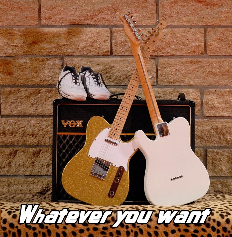 WHATEVER YOU WANT NEW CD Pochet12