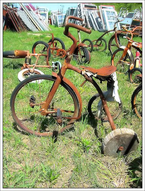 """""""La bicicletta nel tempo"""" - Pagina 2 260"""