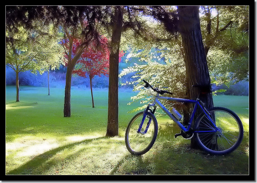 """NiMo Compositions Bicycle Photo Art 1"" 436"