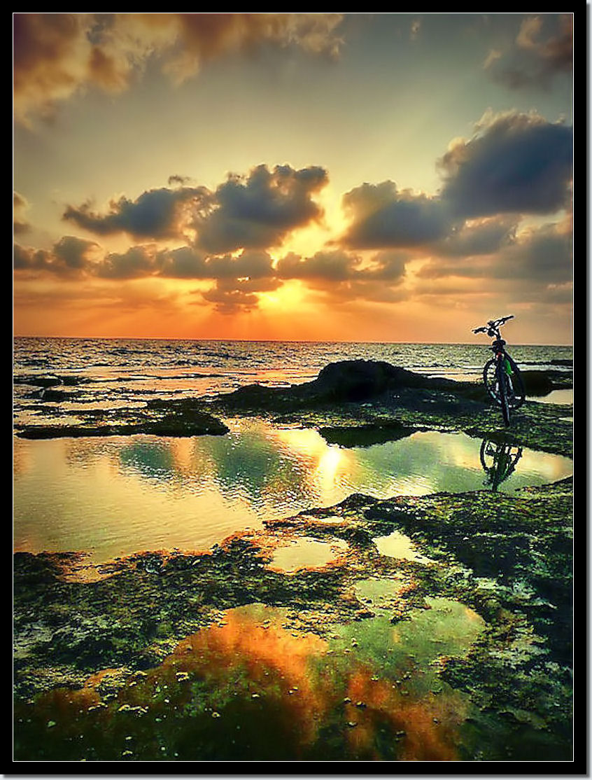 """NiMo Compositions Bicycle Photo Art 1"" 622"