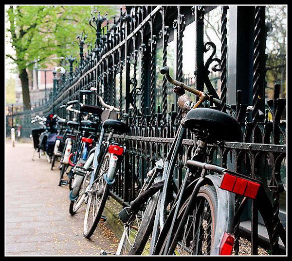 Bike Fun point - Pagina 2 Fila_111
