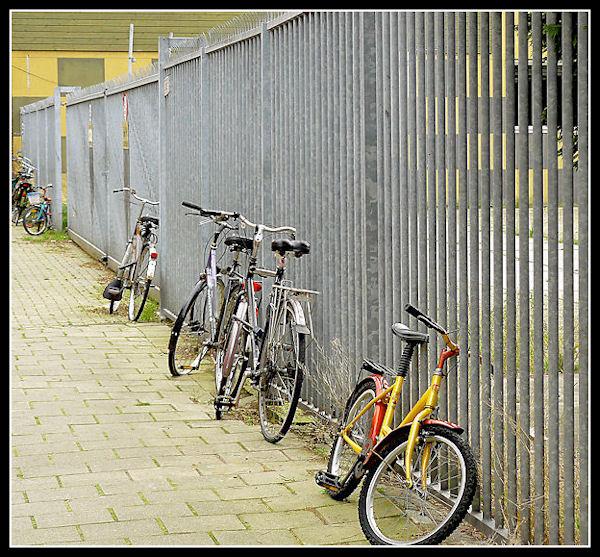 Bike Fun point - Pagina 2 Fila_310