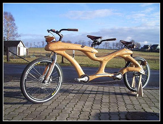 Wood bike Wood110