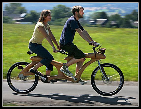 Wood bike Wood310