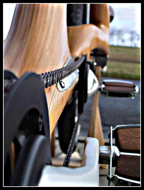Wood bike Wood510