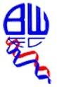 emblèmes équipes anglaise Bolton10