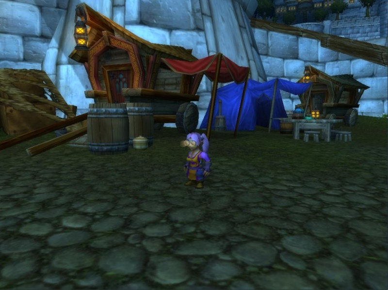 The Fablewind Faire Settlement Meemee10